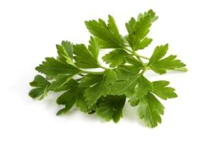 French Herbs