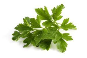 parsley-persil