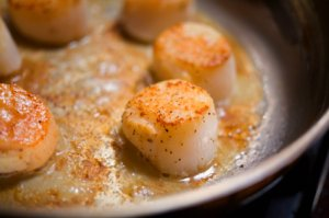 Sauteed scallops the French recipe