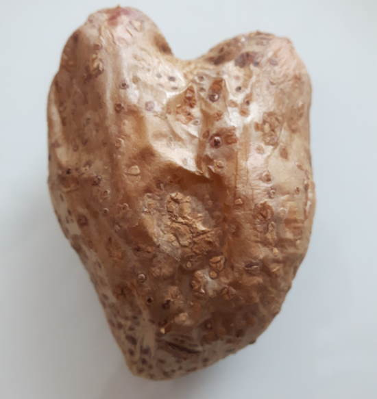 french-potato-recipes